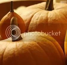 AutumnHarvest.jpg Autumn Harvest image by ABCdenim2007