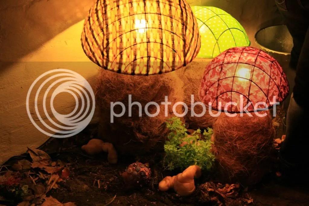 Nat's Lamps