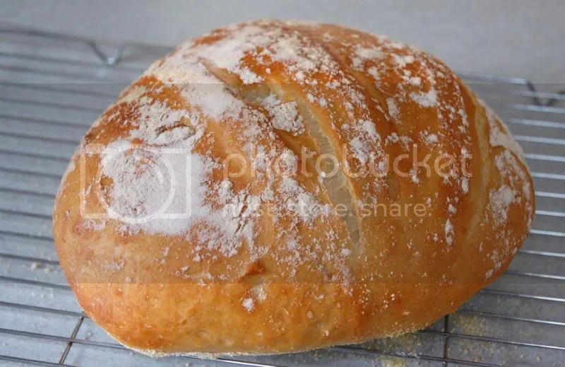 Artisan Bread in Five Minutes a Day? YES! (1/6)