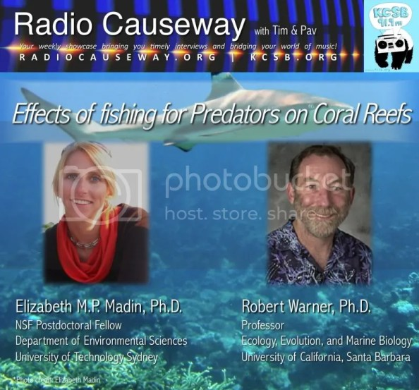 Radio Causeway: Drs. Madin & Warner on Fishing of Predators on Coral Reefs – Dec 14, 2010