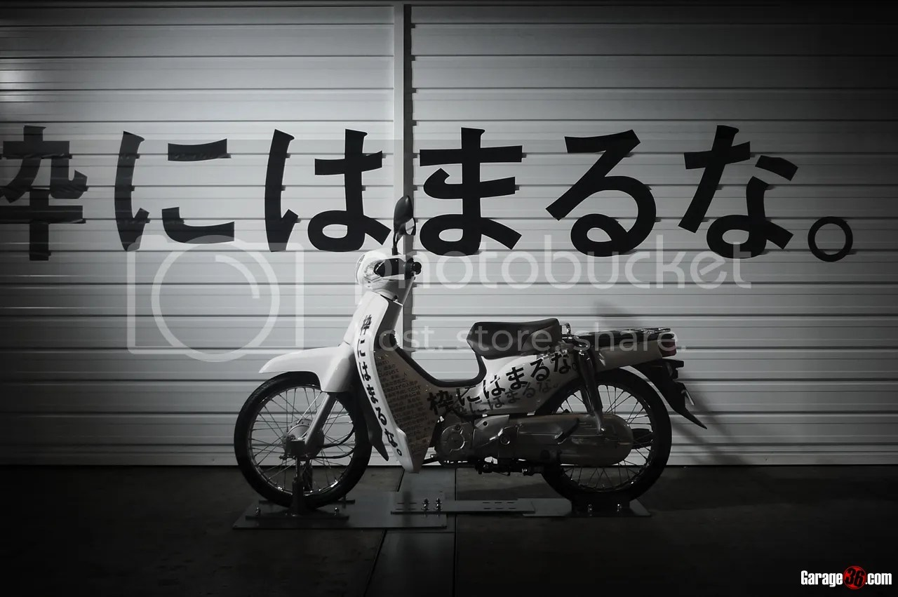 photo P1180827.jpg