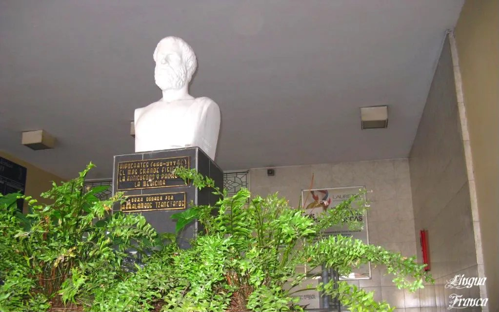 A solemn bust of Hipocrates at the entrance of the building surrounded by deep green ferns.  (Credit:  Omar Upegui R.)