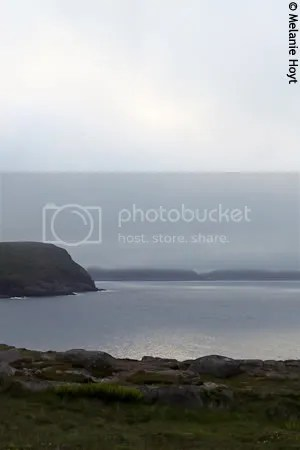 Cape Spear view 2