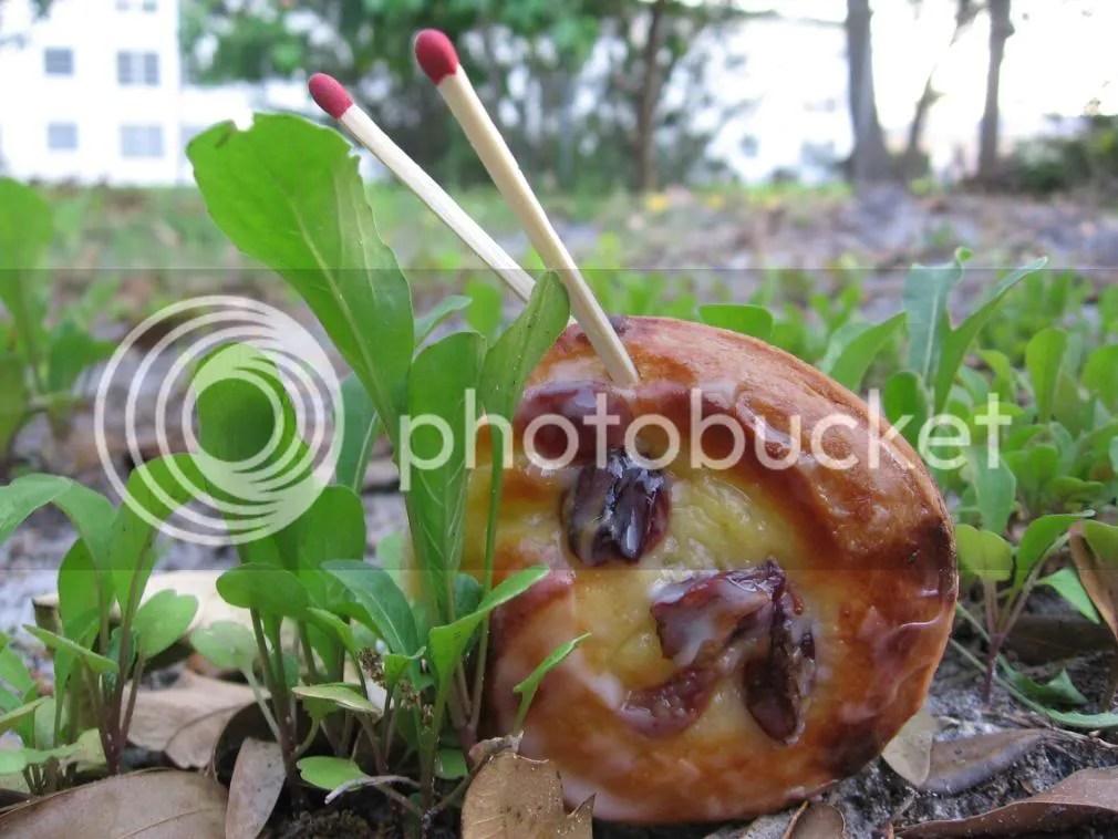 brioche snails