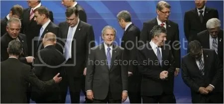 Bush alone 2