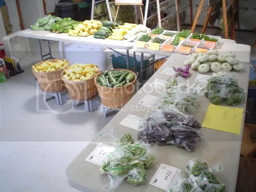 veggies, herbs, miscellaneous table