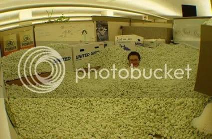Sempre sonhei em nadar em uma piscina de pipocas, só não imaginava que ela seria no meu cubiculo!!