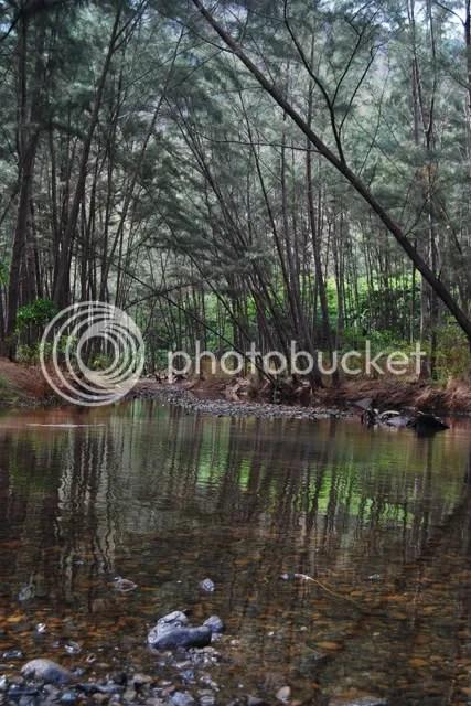 River at Anawangin Cove