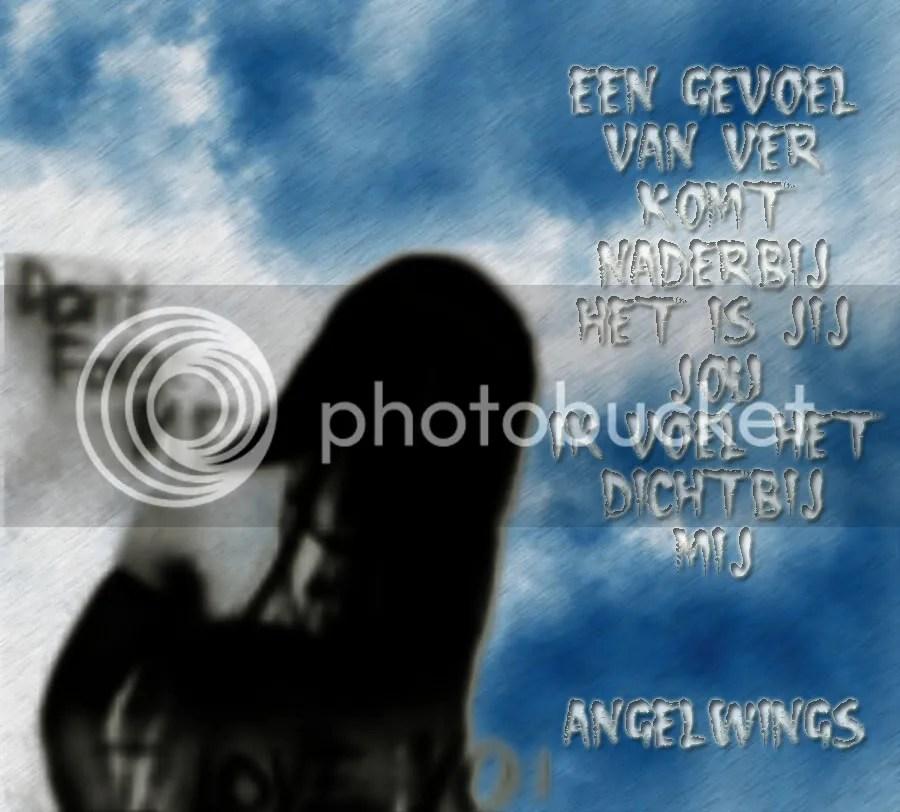photo 93a33c3b.jpg