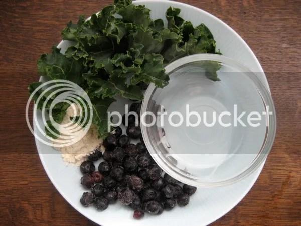 BlueberryKale Ingredients 5 Sweet and Savory Primal Shakes
