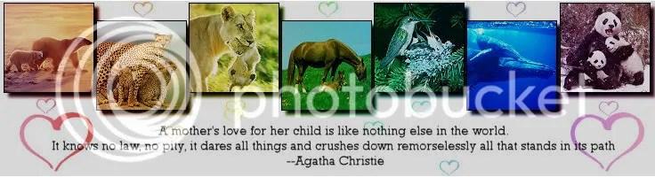 inspiration photo:  MOTHERS_LOVE.jpg
