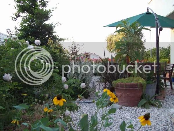 My previous suburban garden