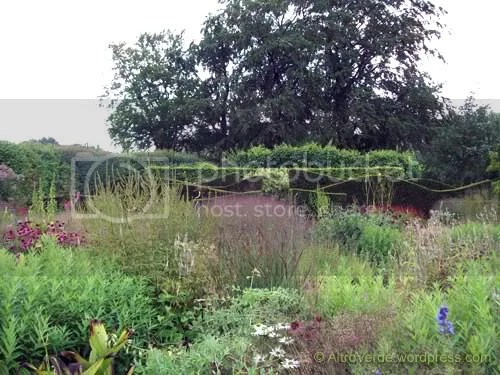 The Oudolfs' front garden