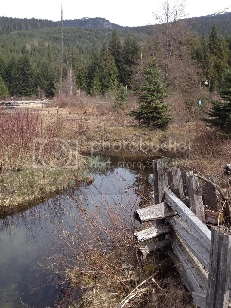 Lost Lake Outflow near Whistler BC photo 2014-05-02144426_zps1653fad6.jpg