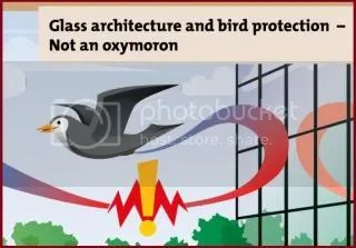 Ornilux glass if ornithologically superior glass, birds see spiderwebs over reflection of sky