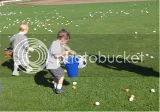 Get those eggs!