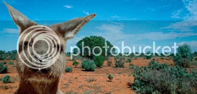 photo evotourism-Kangaroo-Island-Australia-631_zps1b12ab95.jpg