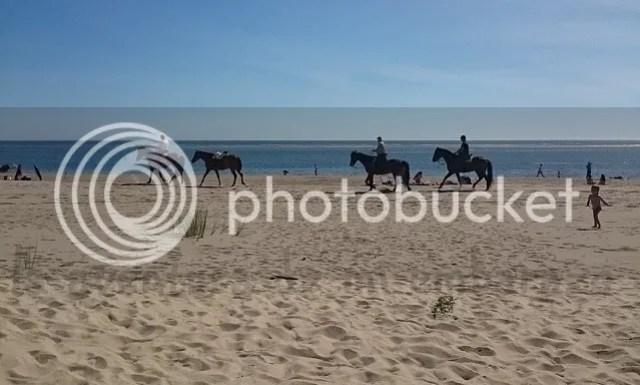 photo paseo-caballo-playa_zpsvvpgs72p.jpg