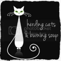 herding cats & burning soup