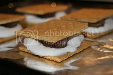 smores Pictures, Images and Photos