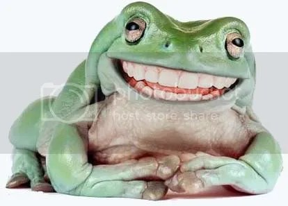 Image result for smiling frog