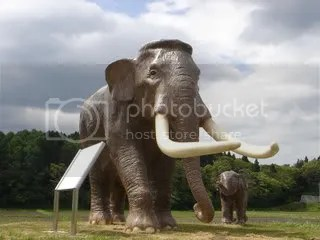 NojirikoMuseumNaumannelephants.jpg picture by Heritageofjapan