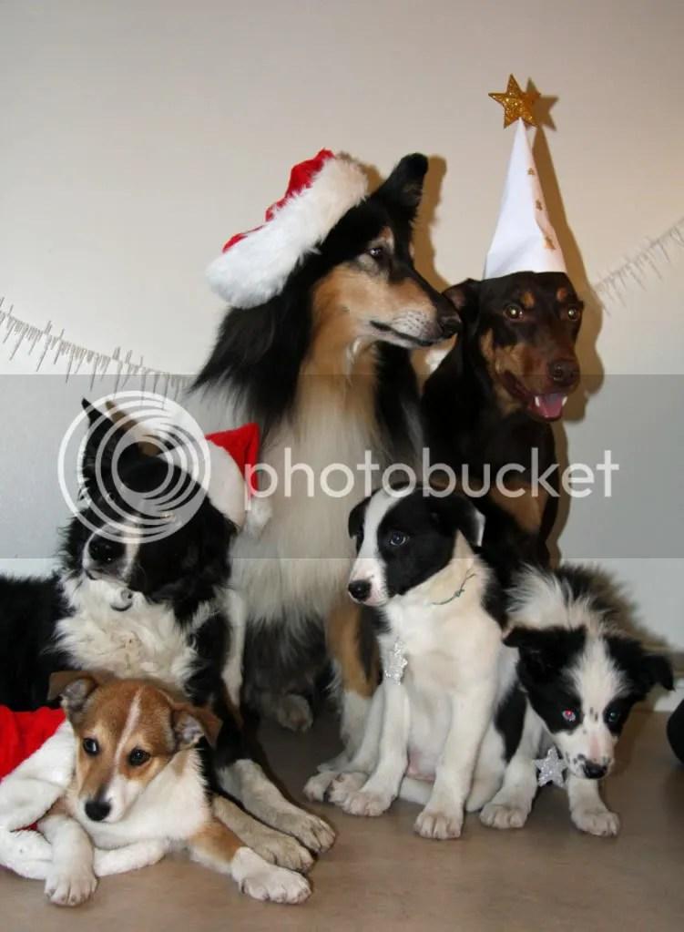 Detta var den bästa bilden vi fick till.... julen 2008