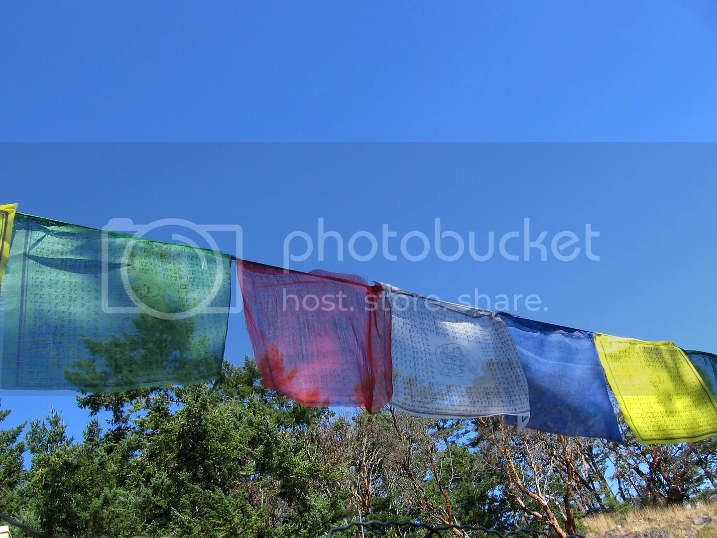 Extra Long String Tibetan Buddhist Prayer Flags Wind Horse Lung TA 22 ...