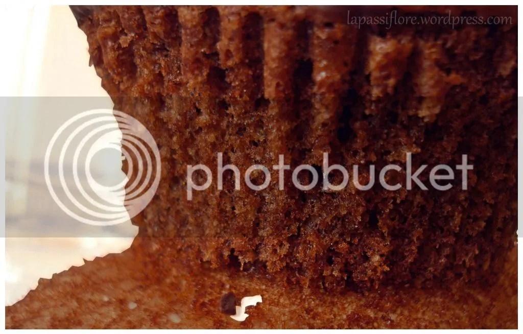 photo chocolatecelebrationcupcakes1_zps1ef8c8bf.jpeg