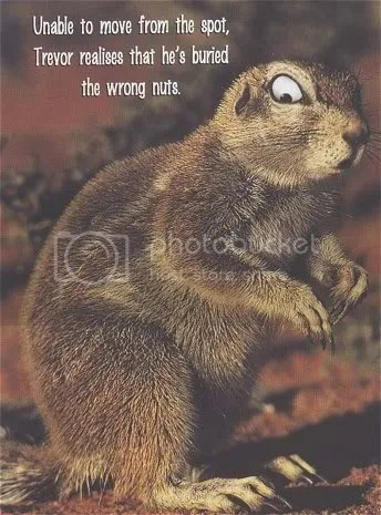 wrong nut
