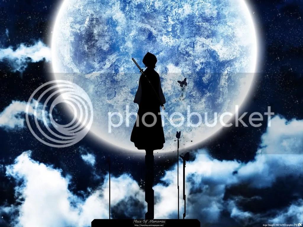 https://i2.wp.com/i272.photobucket.com/albums/jj193/otakucenter_com/bleach/kuchiki_rukia/rukia-pole-moonlight.jpg