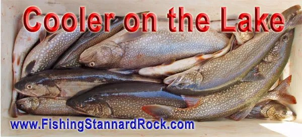 CoolerontheLake Stannard Rock Lake Trout   Filling the Cooler