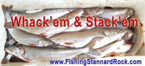 WhackemStackem Stannard Rock Lake Trout   Filling the Cooler