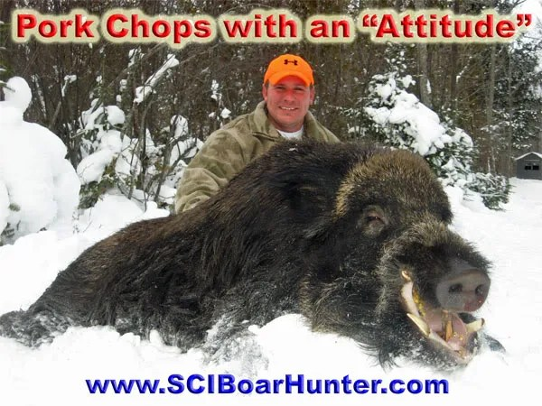 Authentic Boar Hunting in Northern Michigan - Winter ...Giant Wild Boar Hunting In Usa