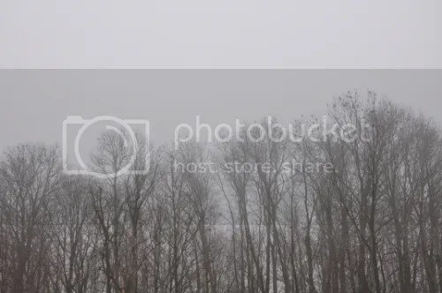 photo b0b88cc5-89ce-4489-a8e3-85c23b238f5c_zps7e358782.jpg