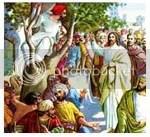 meneladani Yesus, orang Farisi, Zakheus