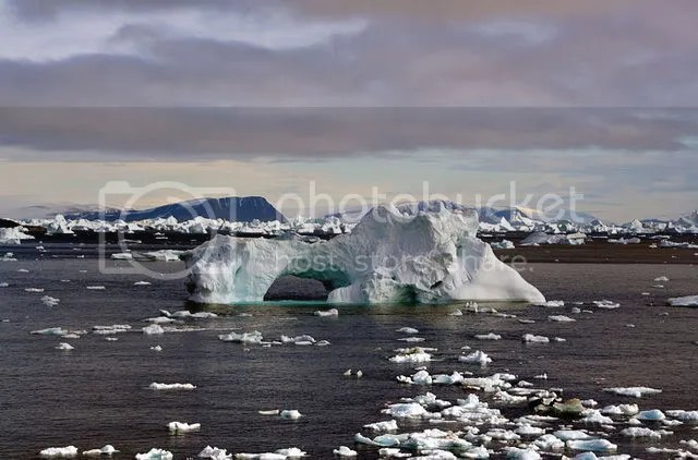 icebergs_greenland_lg.jpg picture by summersummer_2008