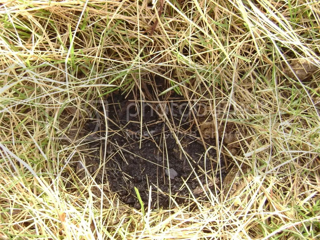 haystacks005.jpg picture by bro123450