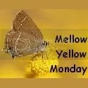 MellowYellowMondayBadge