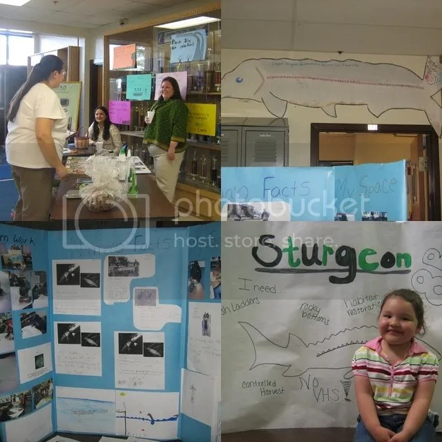 sturgeon classes collage