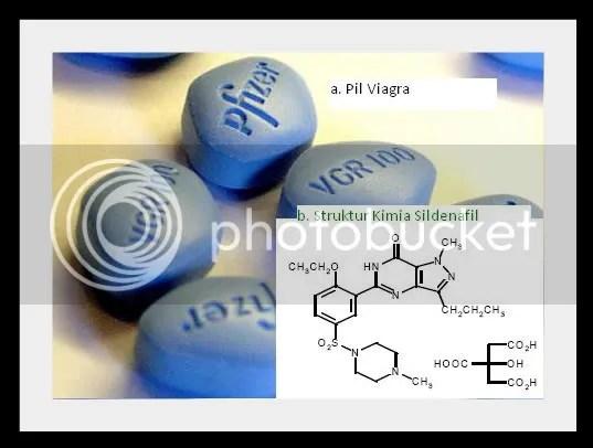 Viagra pil