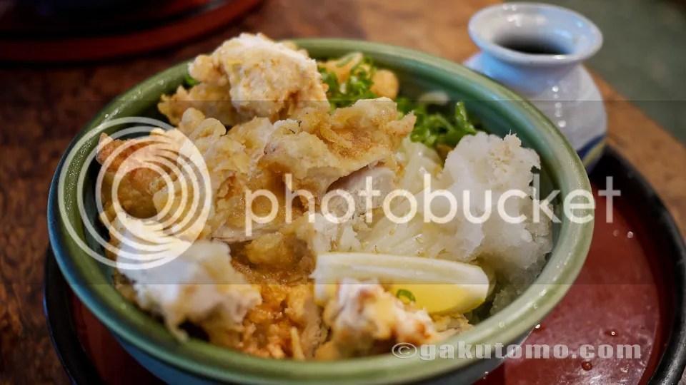 photo udon-8.jpg, Udon