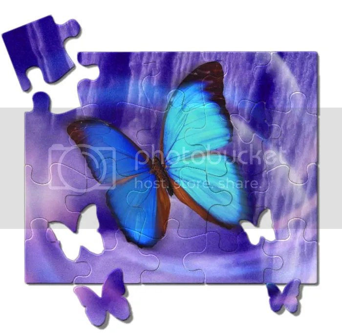 butterfly_puzzle.jpg picture by HavenWhite