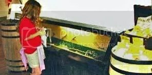 Atocha sword display