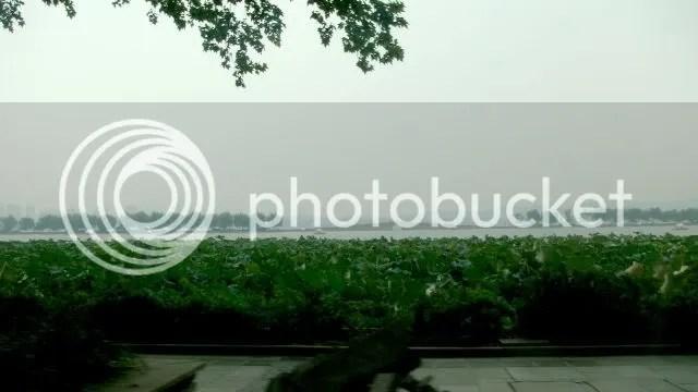 Bai Causeway, West Lake