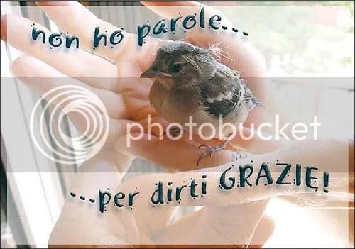 grazie.jpg grazie image by richele_87