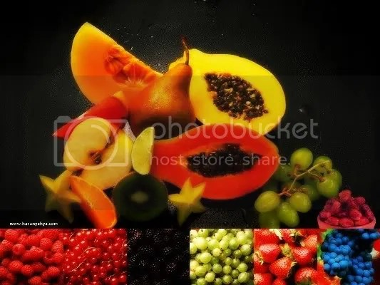 buah Pictures, Images and Photos