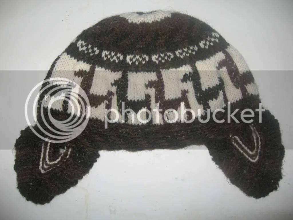 Llama Hat1