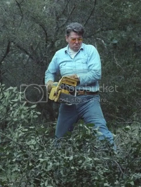 President Reagan Working