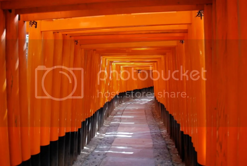 The famous Fushimi Inari picture that can be found all over the internet and various publications about Japan and Kyoto.